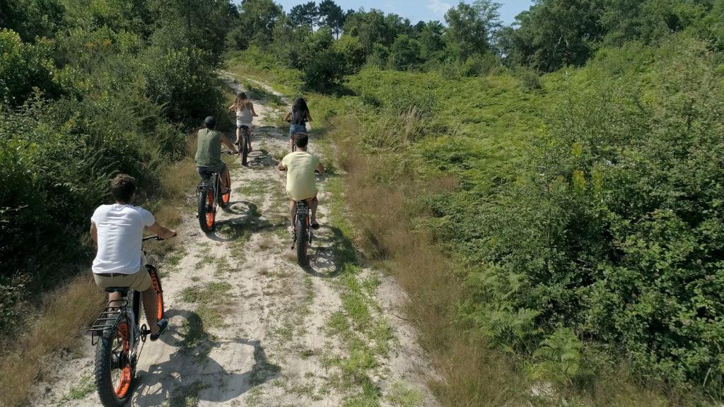 Randonnée vélo en forêt